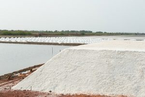 Large piles of salt crystals drying in the sun